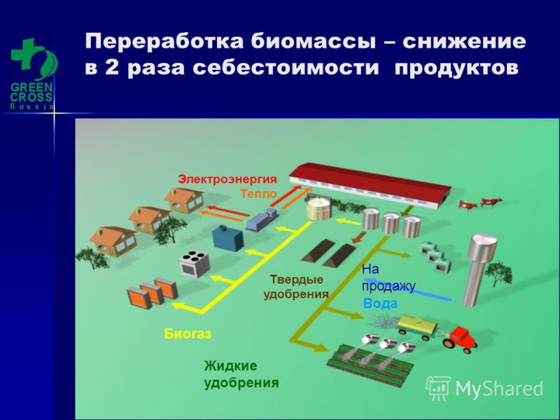 Зелёный Крест (С) 2010 Электроэнергия Тепло Биогаз Жидкие удобрения Твердые удобрения Вода На продажу Переработка биомассы – снижение в 2 раза себестоимости продуктов