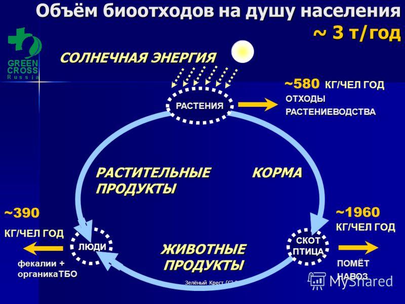 Зелёный Крест (С) 2010 ОТХОДЫРАСТЕНИЕВОДСТВА ~1960 КГ/ЧЕЛ ГОД СКОТПТИЦА ЛЮДИ ЖИВОТНЫЕПРОДУКТЫ КОРМАРАСТИТЕЛЬНЫЕПРОДУКТЫ СОЛНЕЧНАЯ ЭНЕРГИЯ РАСТЕНИЯ ~580 КГ/ЧЕЛ ГОД ПОМЁТНАВОЗ фекалии + органикаТБО ~390 КГ/ЧЕЛ ГОД Объём биоотходов на душу населения ~ 3