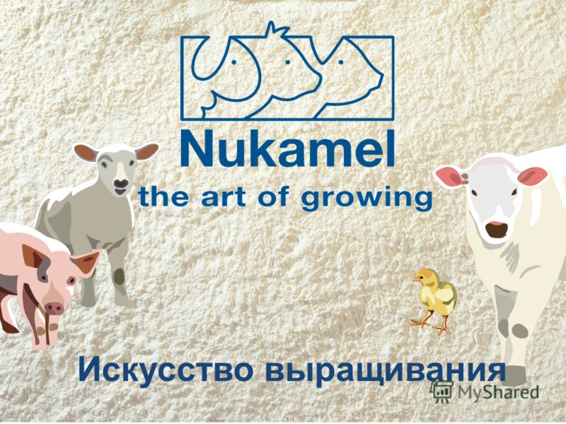 www.nukamel.com Искусство выращивания