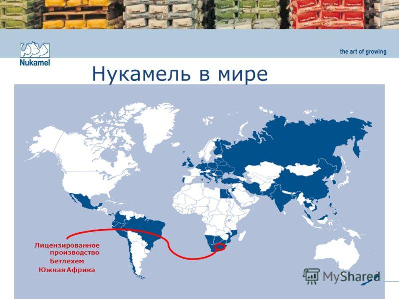 www.nukamel.com Нукамель в мире Лицензированное производство Бетлехем Южная Африка