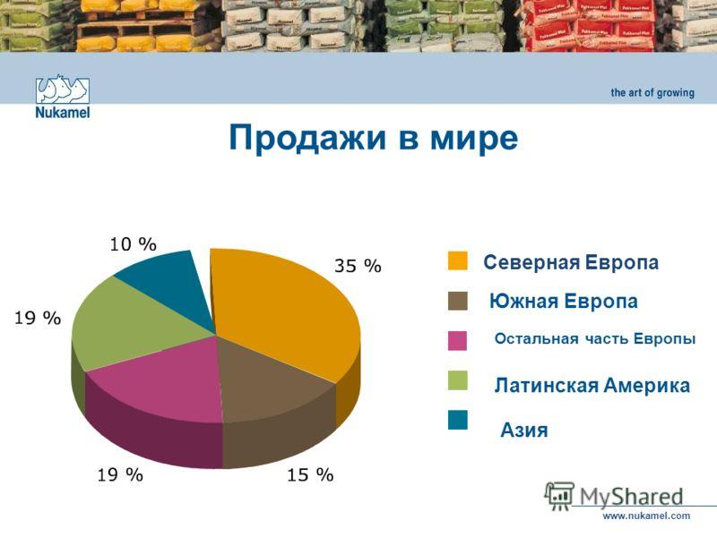 www.nukamel.com Северная Европа Южная Европа Остальная часть Европы Азия Латинская Америка Продажи в мире