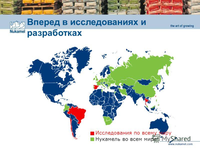 www.nukamel.com Вперед в исследованиях и разработках Нукамель во всем мире Исследования по всему миру