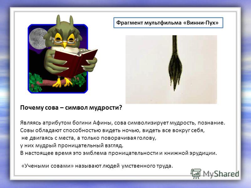 Фрагмент мультфильма «Винни-Пух» «Учеными совами» называют людей умственного труда. Почему сова – символ мудрости? Являясь атрибутом богини Афины, сова символизирует мудрость, познание. Совы обладают способностью видеть ночью, видеть все вокруг себя,
