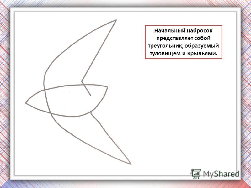 Начальный набросок представляет собой треугольник, образуемый туловищем и крыльями.