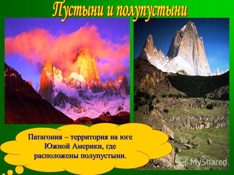 Патагония – территория на юге Южной Америки, где расположены полупустыни.