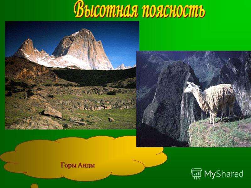 Горы Анды