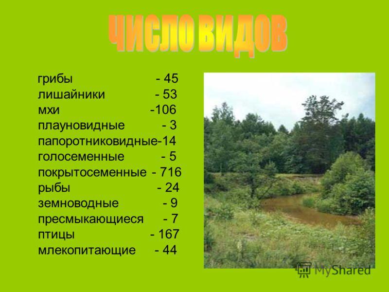 грибы - 45 лишайники - 53 мхи -106 плауновидные - 3 папоротниковидные-14 голосеменные - 5 покрытосеменные - 716 рыбы - 24 земноводные - 9 пресмыкающиеся - 7 птицы - 167 млекопитающие - 44