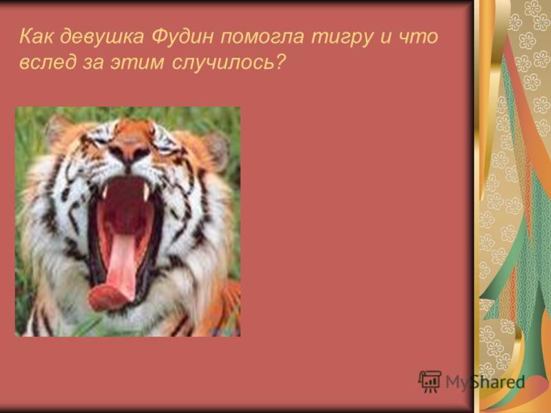 Как девушка Фудин помогла тигру и что вслед за этим случилось?