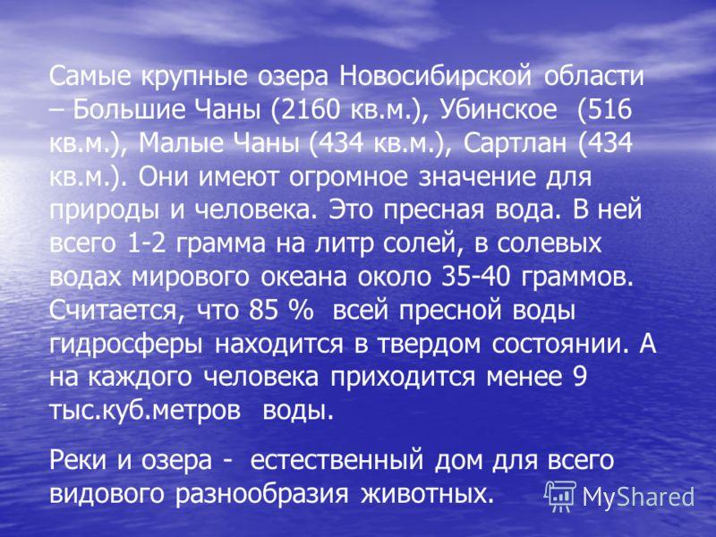 Самые крупные озера Новосибирской области – Большие Чаны (2160 кв.м.), Убинское (516 кв.м.), Малые Чаны (434 кв.м.), Сартлан (434 кв.м.). Они имеют огромное значение для природы и человека. Это пресная вода. В ней всего 1-2 грамма на литр солей, в со