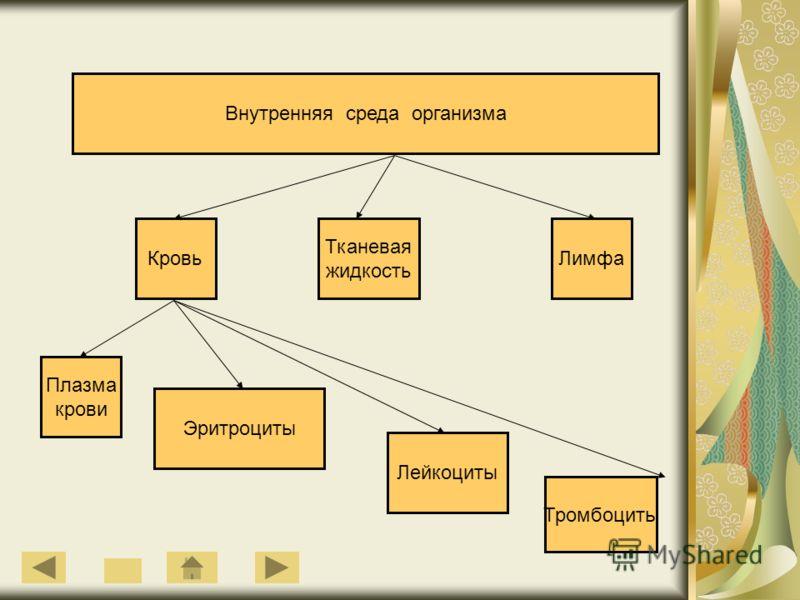 Внутренняя среда организма Кровь Тканевая жидкость Лимфа Плазма крови Эритроциты Лейкоциты Тромбоциты