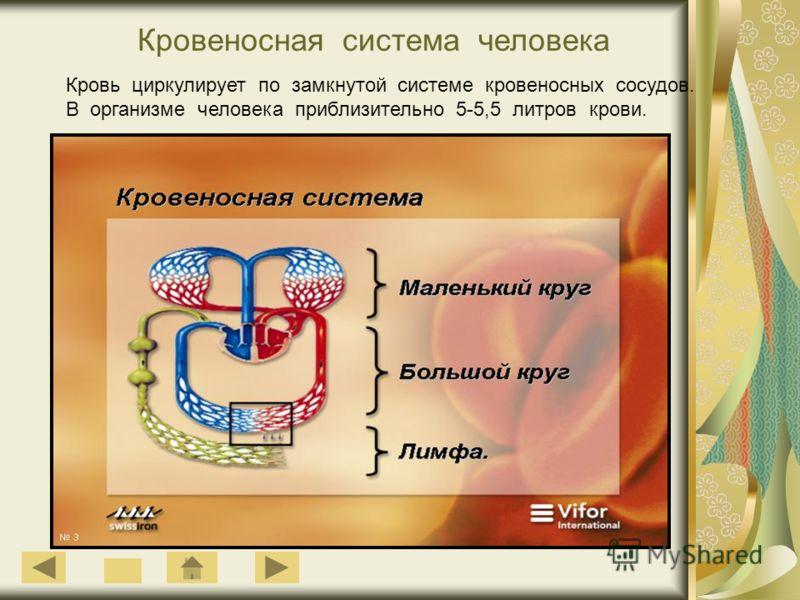 Кровеносная система человека Кровь циркулирует по замкнутой системе кровеносных сосудов. В организме человека приблизительно 5-5,5 литров крови.