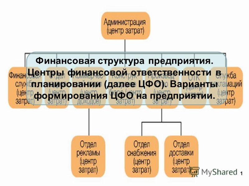 Финансовая структура предприятия. Центры финансовой ответственности в планировании (далее ЦФО). Варианты формирования ЦФО на предприятии. 1