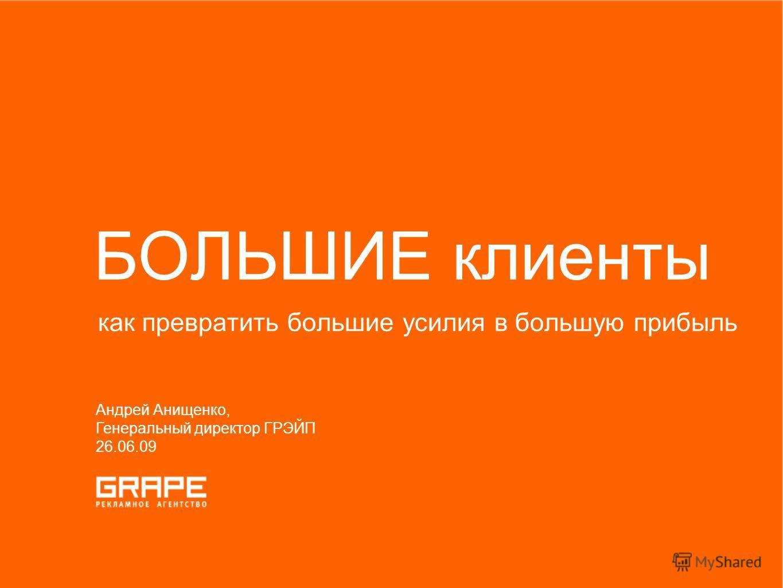 как превратить большие усилия в большую прибыль БОЛЬШИЕ клиенты Андрей Анищенко, Генеральный директор ГРЭЙП 26.06.09