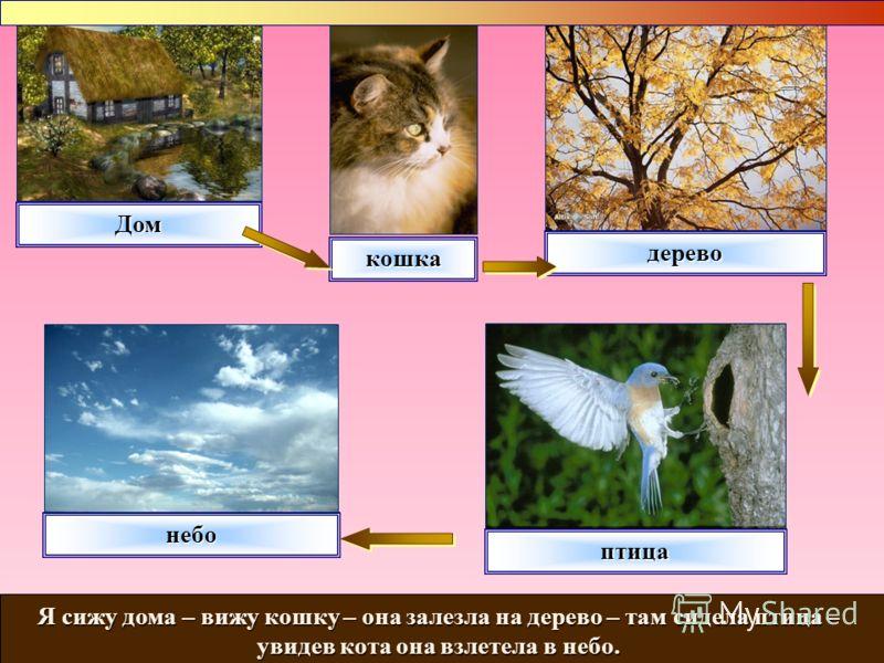 Дом кошка дерево небо Я сижу дома – вижу кошку – она залезла на дерево – там сидела птица – увидев кота она взлетела в небо. птица