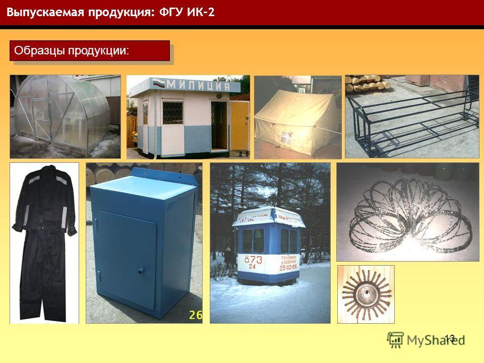 13 Выпускаемая продукция: ФГУ ИК-2 Образцы продукции: