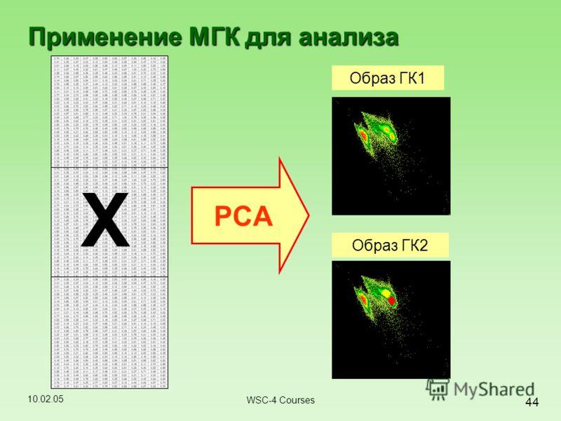 10.02.05 44 WSC-4 Courses Применение МГК для анализа X PCA Образ ГК1 Образ ГК2