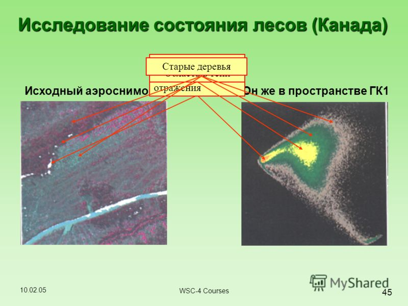 10.02.05 45 WSC-4 Courses Он же в пространстве ГК1Исходный аэроснимок Исследование состояния лесов (Канада) Область с высоким коэффициентом отражения Область в тениНовые посадкиСтарые деревья