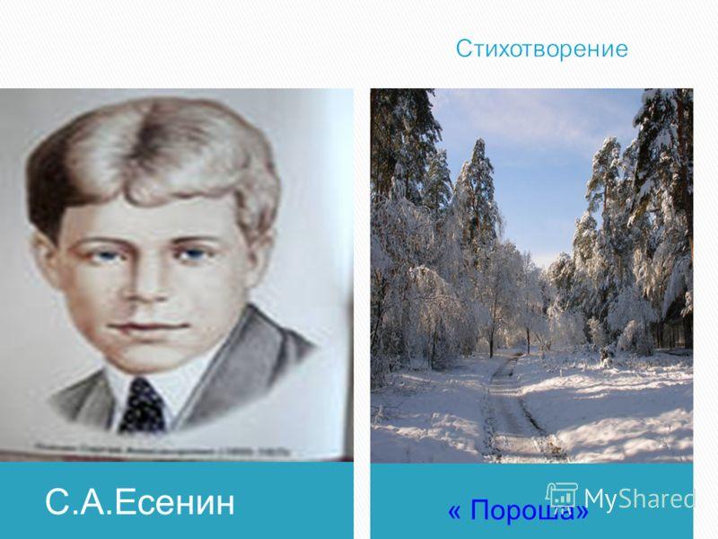 С.А.Есенин « Пороша»