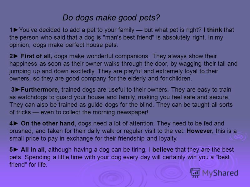 Do dogs make good pets? 1You've decided to add a pet to your family but what pet is right? I think that the person who said that a dog is