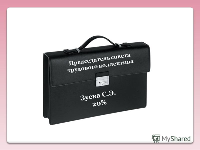 Председатель совета трудового коллектива Зуева С.Э. 20%