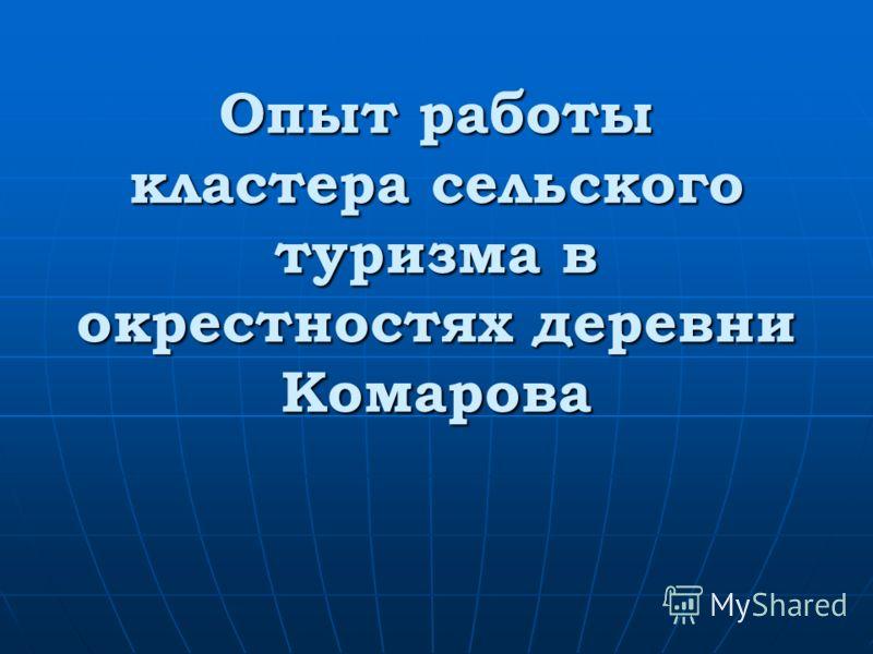 Опыт работы кластера сельского туризма в окрестностях деревни Комарова