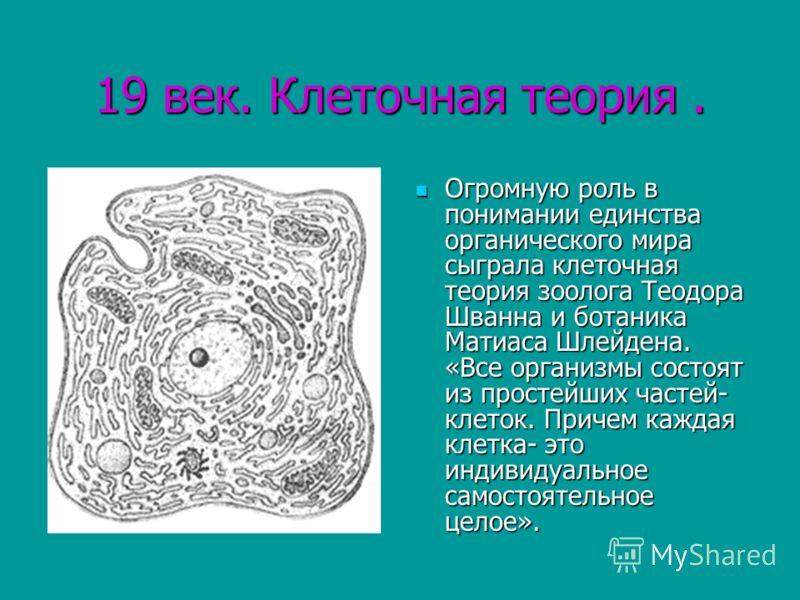 19 век. Клеточная теория. Огромную роль в понимании единства органического мира сыграла клеточная теория зоолога Теодора Шванна и ботаника Матиаса Шлейдена. «Все организмы состоят из простейших частей- клеток. Причем каждая клетка- это индивидуальное