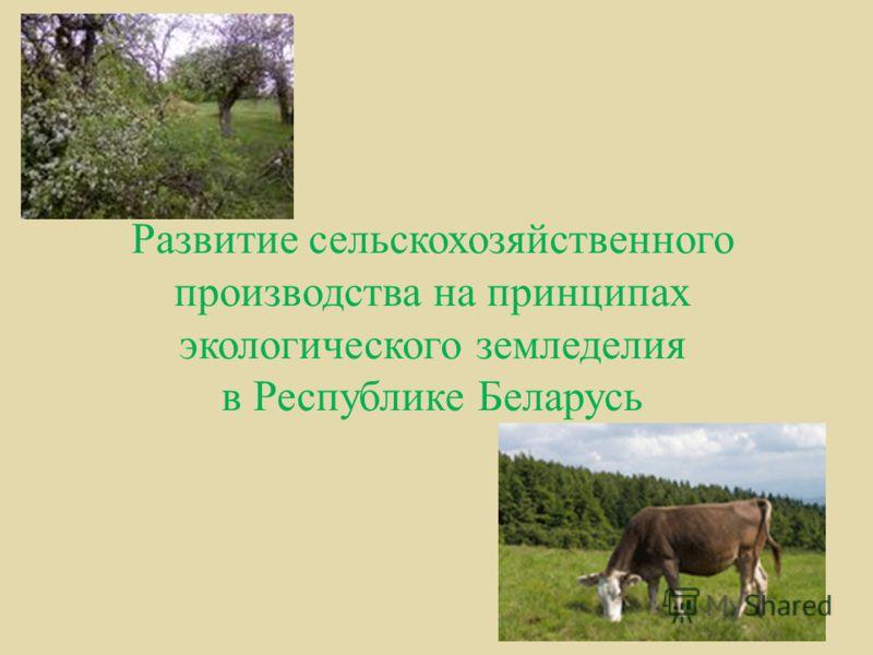 Развитие сельскохозяйственного производства на принципах экологического земледелия в Республике Беларусь
