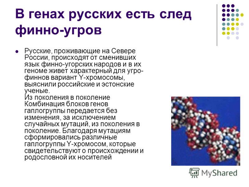 В генах русских есть след финно-угров Русские, проживающие на Севере России, происходят от сменивших язык финно-угорских народов и в их геноме живет характерный для угро- финнов вариант Y-хромосомы, выяснили российские и эстонские ученые. Из поколени