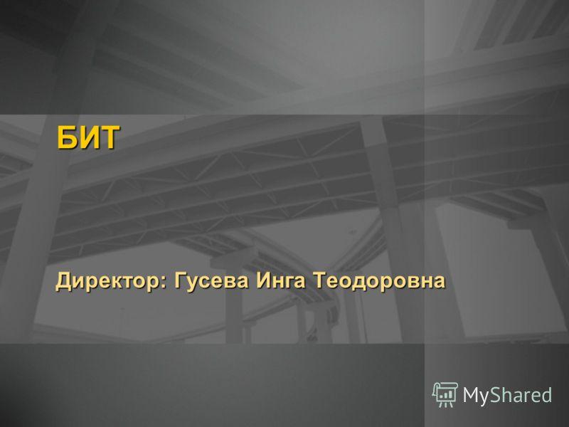 БИТ Директор: Гусева Инга Теодоровна