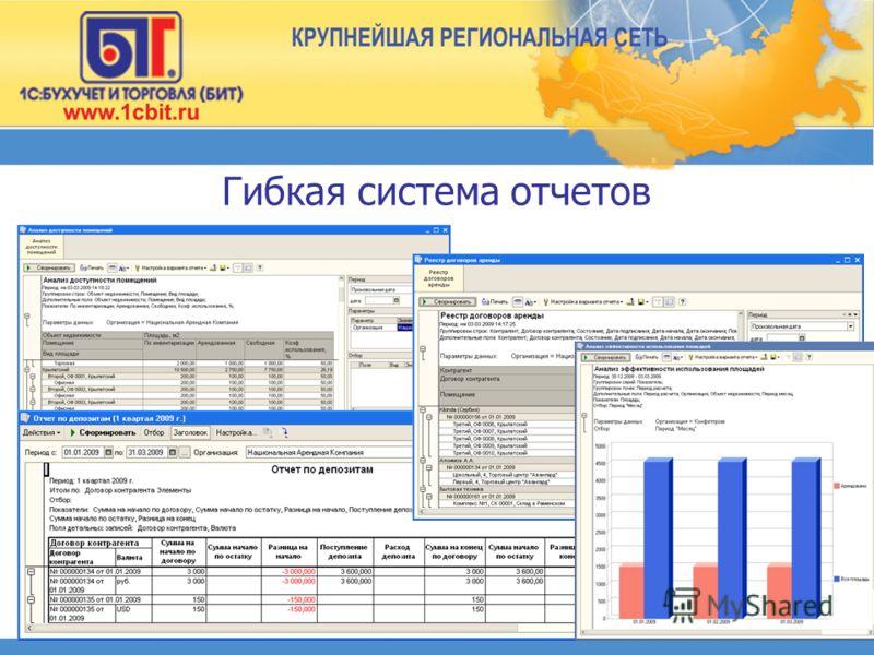 Гибкая система отчетов