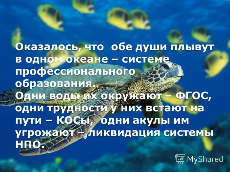 Оказалось, что обе души плывут в одном океане – системе профессионального образования. Одни воды их окружают – ФГОС, одни трудности у них встают на пути – КОСы, одни акулы им угрожают – ликвидация системы НПО.