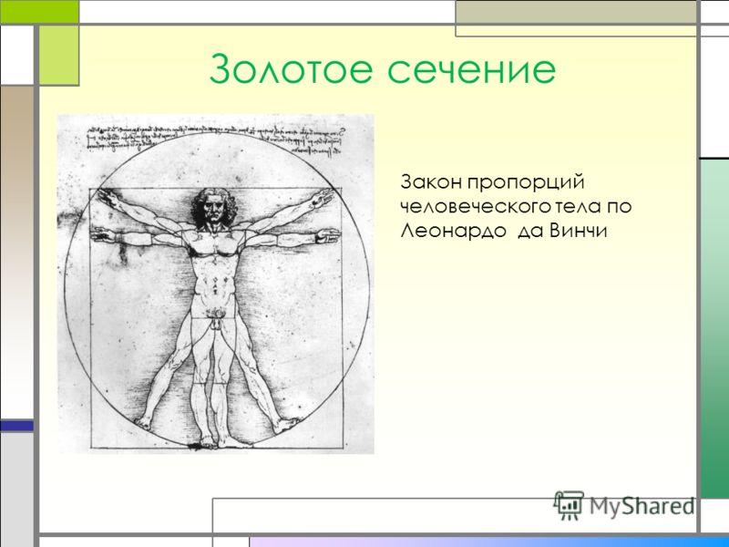 Золотое сечение Закон пропорций человеческого тела по Леонардо да Винчи