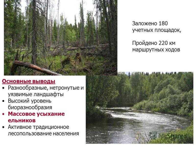 Заложено 180 учетных площадок, Пройдено 220 км маршрутных ходов Основные выводы Разнообразные, нетронутые и уязвимые ландшафты Высокий уровень биоразнообразия Массовое усыхание ельников Активное традиционное лесопользование населения