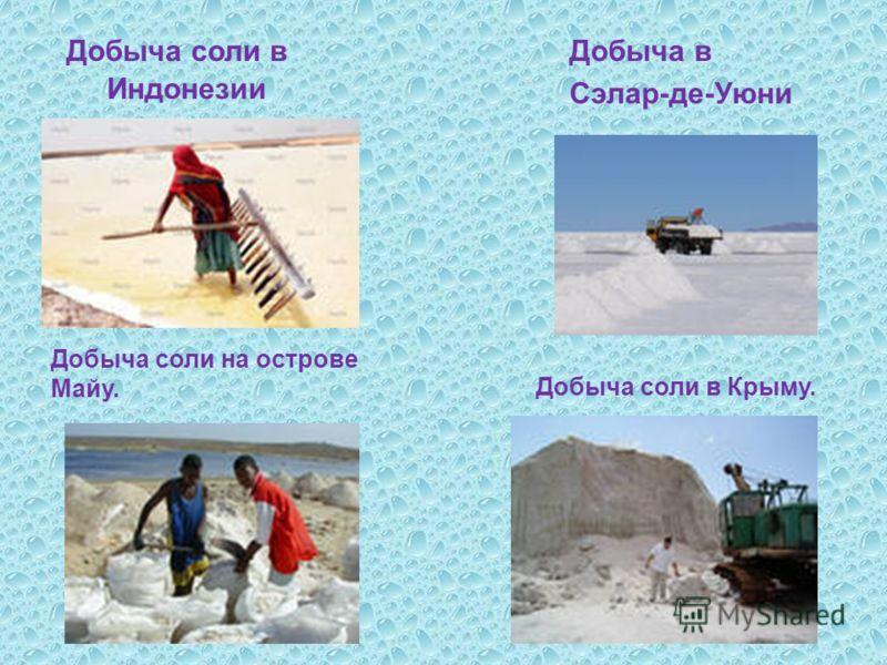 Добыча соли в Индонезии Добыча в Сэлар - де - Уюни Добыча соли на острове Майу. Добыча соли в Крыму.