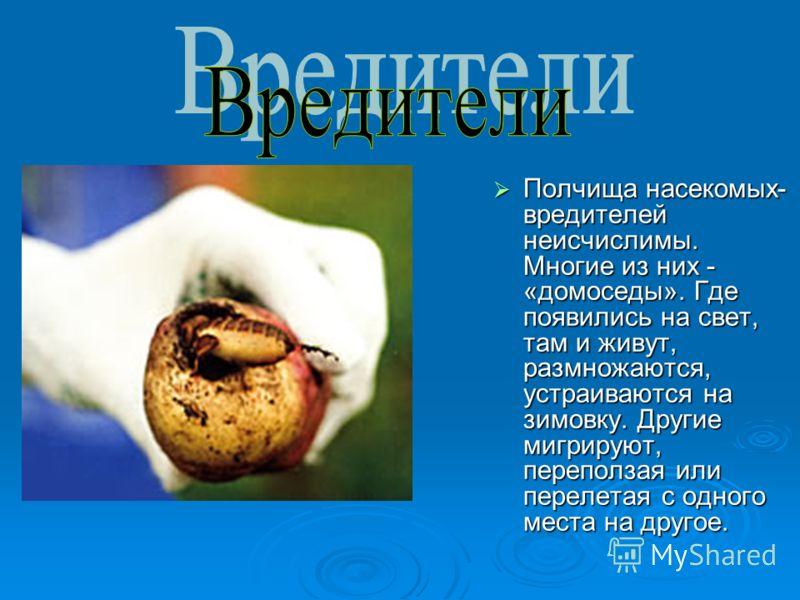 Полчища насекомых- вредителей неисчислимы. Многие из них - «домоседы». Где появились на свет, там и живут, размножаются, устраиваются на зимовку. Другие мигрируют, переползая или перелетая с одного места на другое. Полчища насекомых- вредителей неисч
