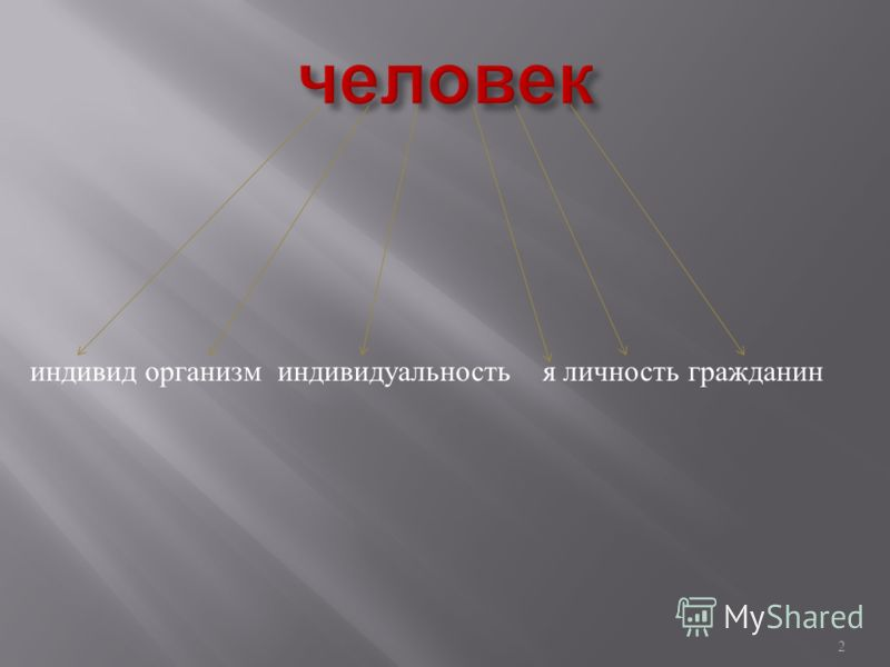 1 Классный час 2008-2009 учебный год