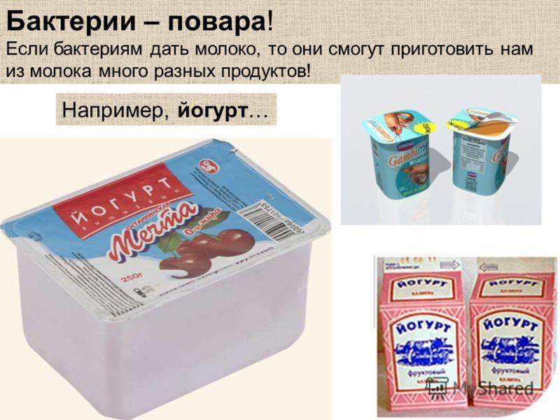 Бактерии – повара! Если бактериям дать молоко, то они смогут приготовить нам из молока много разных продуктов! Например, йогурт…