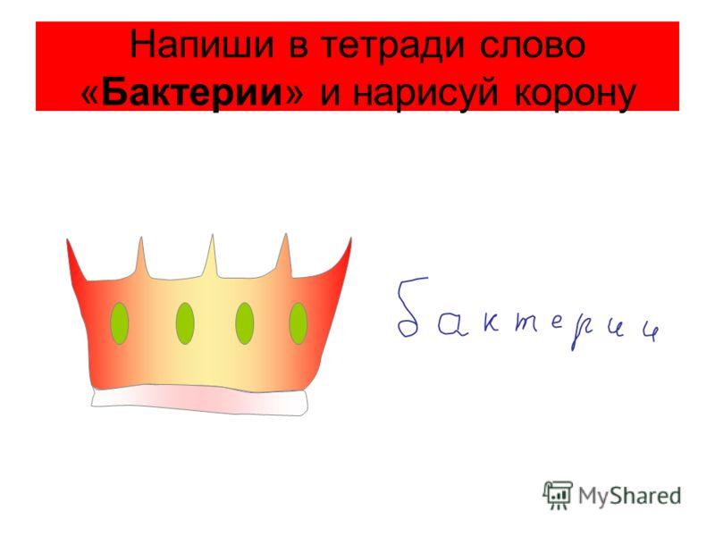 Напиши в тетради слово «Бактерии» и нарисуй корону