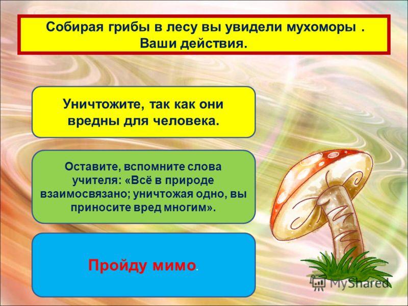 Собирая грибы в лесу вы увидели мухоморы. Ваши действия. Уничтожите, так как они вредны для человека. Оставите, вспомните слова учителя: «Всё в природе взаимосвязано; уничтожая одно, вы приносите вред многим». Пройду мимо.