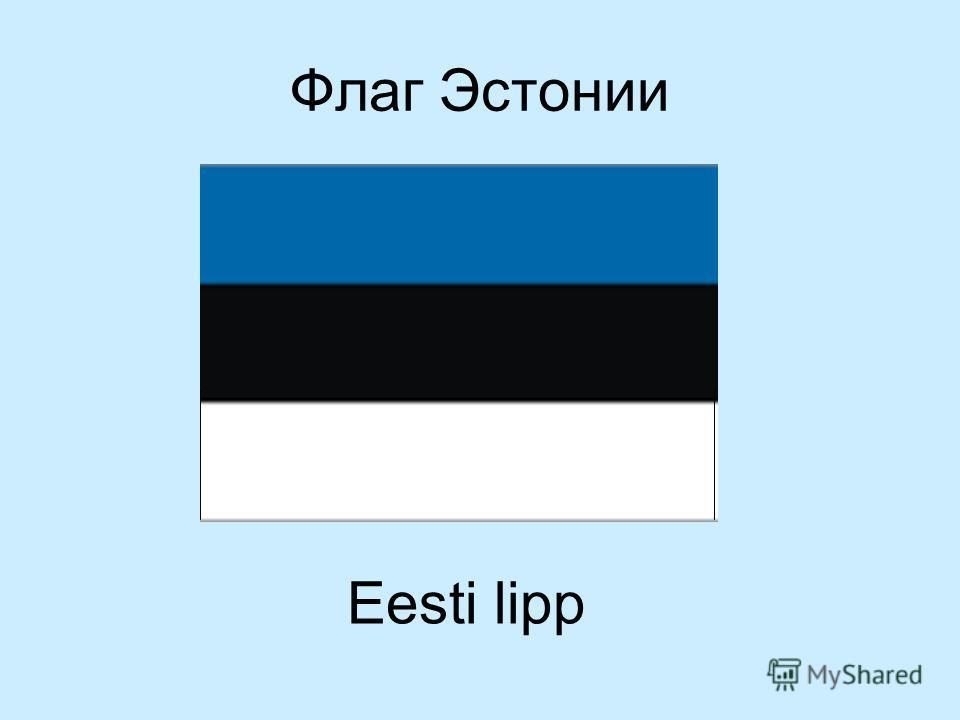Флаг Эстонии Eesti lipp