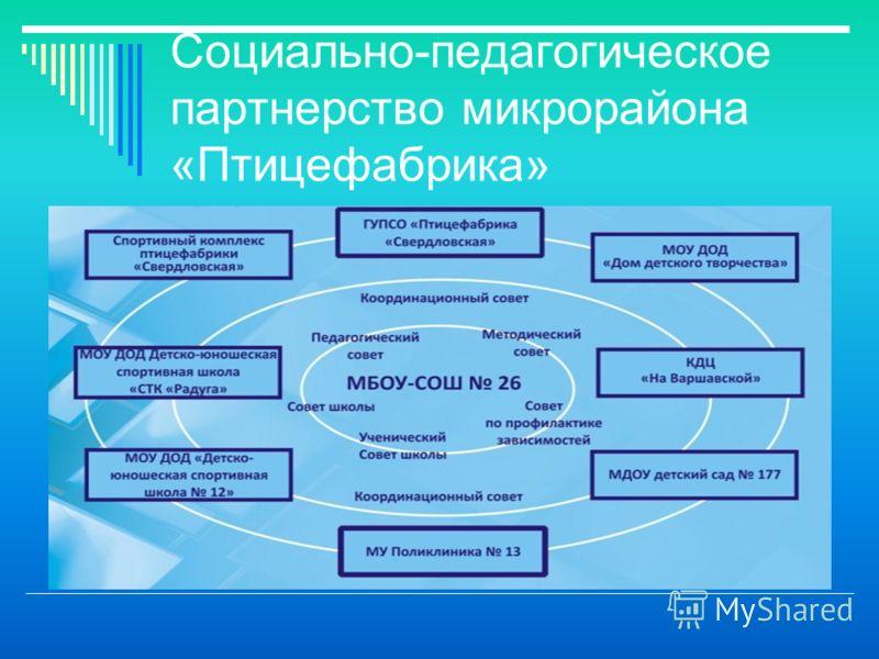 Социально-педагогическое партнерство микрорайона «Птицефабрика»