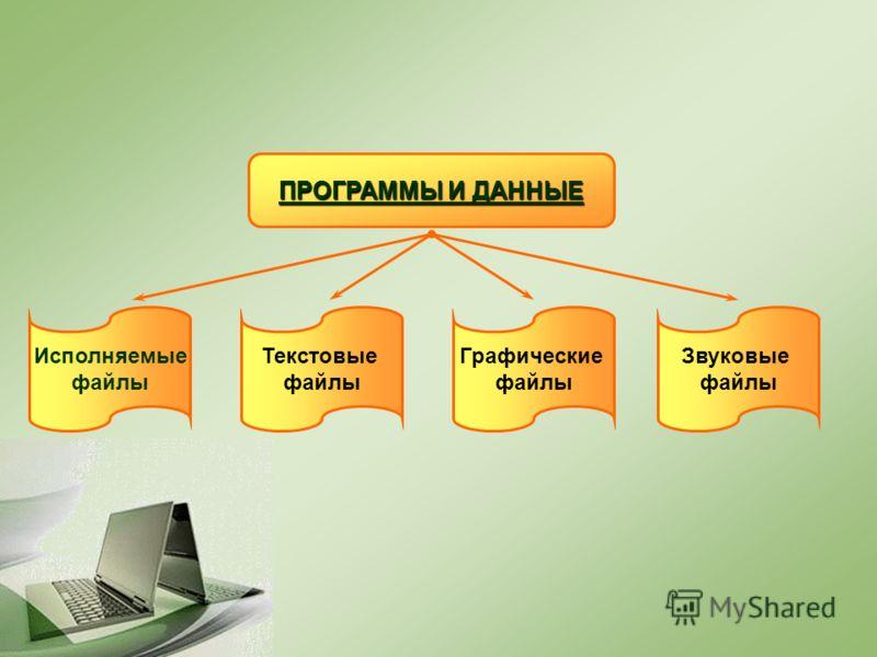 ПРОГРАММЫ И ДАННЫЕ Исполняемые файлы Текстовые файлы Графические файлы Звуковые файлы