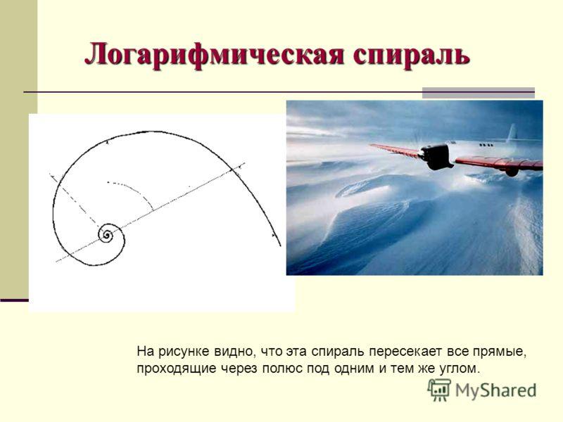 На рисунке видно, что эта спираль пересекает все прямые, проходящие через полюс под одним и тем же углом. Логарифмическая спираль