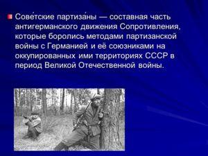 Сове́тские партиза́ны составная часть антигерманского движения Сопротивления, которые боролись методами партизанской войны с Германией и её союзниками на оккупированных ими территориях СССР в период Великой Отечественной войны.