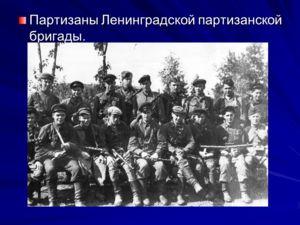 Партизаны Ленинградской партизанской бригады.