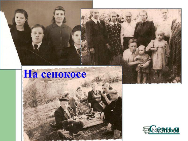 Семья На сенокосе