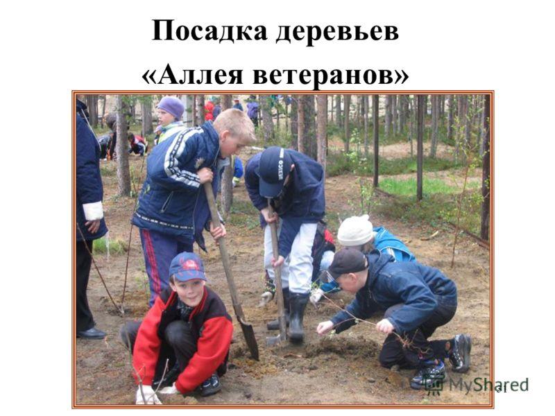 31 Посадка деревьев «Аллея ветеранов»