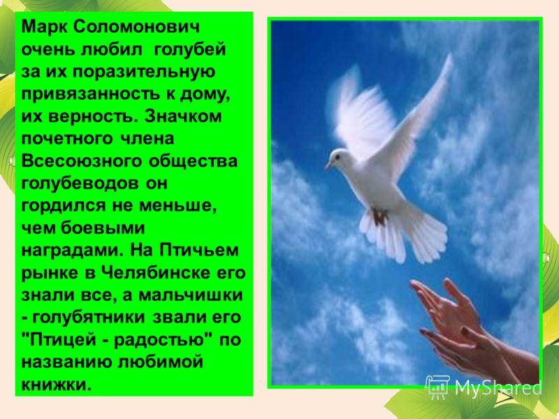 Марк Соломонович очень любил голубей за их поразительную привязанность к дому, их верность. Значком почетного члена Всесоюзного общества голубеводов он гордился не меньше, чем боевыми наградами. На Птичьем рынке в Челябинске его знали все, а мальчишк