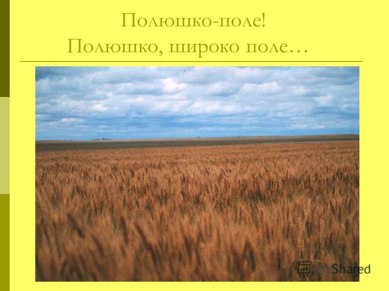 Полюшко-поле! Полюшко, широко поле…