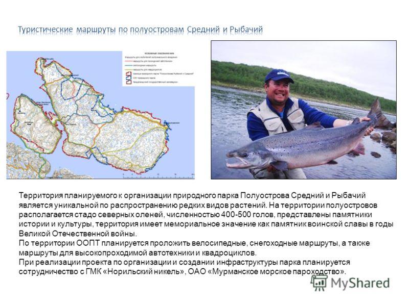 Территория планируемого к организации природного парка Полуострова Средний и Рыбачий является уникальной по распространению редких видов растений. На территории полуостровов располагается стадо северных оленей, численностью 400-500 голов, представлен